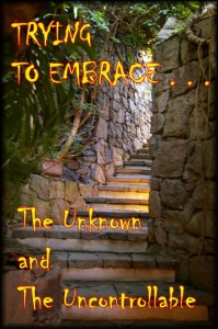 Trying to Embrace the Unknown and the Uncontrollable