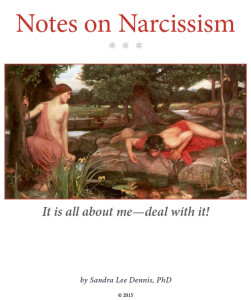 More Notes on Narcissism